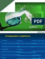 PP Unidad 13