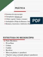 biologia_pratica