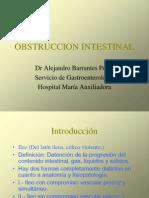 8-obstruccionintestinal-100520111257-phpapp02