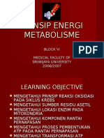 PRINSIP ENERGI METABOLISME