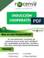 INDUCCION COOPERATIVA 2011