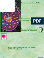 GPCR and Apoptois