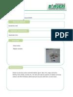 Planilha para descrição do material produzido