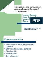 Article 23 Presentation