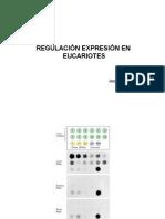 11-Regulacion Transcripcion Eucariotes I 2011-2