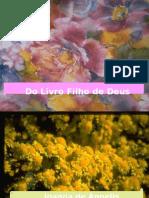Do Livro Filho de Deus