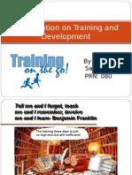 04 Training n Development 1