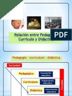 Componentes y Modelos Curriculares