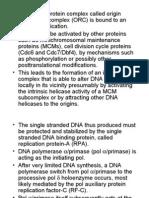 10 30 2006 MCB DNA Replication 2