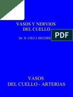 Clase Vasos y Nervios Del Cuello