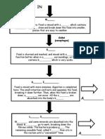 digestion flow chart
