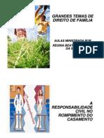 Direito de Familia - Regina Beatriz Tavares