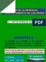 Segunda Clase Genetica, Leyes de La Herencia