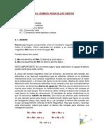 1GMP - Nav_4_Rumbos.Rosa_Vientos