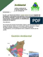 Gestion Ambiental UNIDAD 4