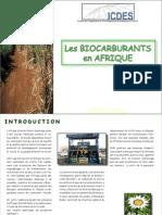 LesBiocarburantsEnAfrique