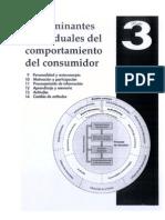 Comportamiento_del_Consumidor_-_Parte_3_-_Andrea_Naranjo