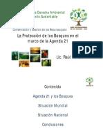 Conservación y Gestión de los Recursos para el Desarrollo y la Protección de los Bosques en el marco de la Agenda 21, por el Lic. Raul Pulido