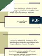 Los derechos humanos y la participación de los pobladores para garantizar la sustentabilidad de los bosques en las Areas Naturales Protegidas, por la Abg. María Henrika Caraballo