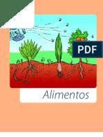 Agroecologia Alimentos Os.impactos.da