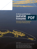 A Once and Future Gulf of Mexico Ecosystem