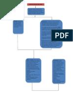 Mapa Conceptual Patologias Cardiacas
