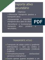 Transporte_ativo