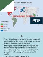 Eu Trade Bloc