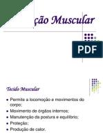 Seminário de bioquímica da contração muscular