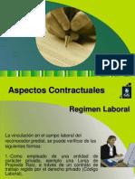 Aspectos_Contractuales