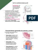 Clase_4_Circulatorio_2011