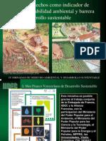 La generación de desechos como indicador de la sustentabilidad ambiental y barrera al desarrollo sustentable, por José Duque