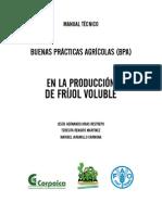 Establecimiento de Frijol Voluble Con Buenas Practicas Agricolas