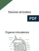 resumen fonetica