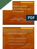 Cap v-A Planific. Tec-Econ de Una Forestacin 2011