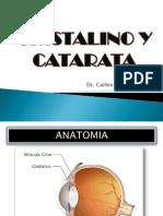 CRISTALINO_Y_CATARATA