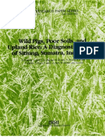 IRPS 155 Wild Pigs, Poor Soils, And Upland Rice