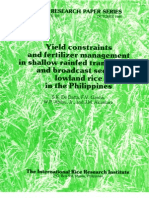 IRPS 132 Yield Constraints and Fetilizer Management in Shallow Rainfed Transplanted and Broadcast Seeded Lowland Rice in the Philippines