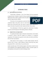 UBL Bannu Branch, Internship Report