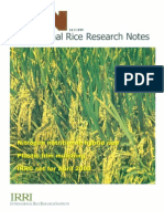 International Rice Research Notes Vol.24 No.1