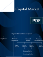 14784493-indian-capital-market-090924162838-phpapp02
