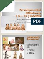 Developmental Milestones 6 Months