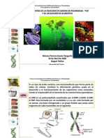 Fundamentos-de-PCR