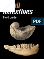 Fossil Detectives Field Guide