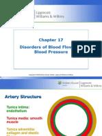 LEC 17 Blood Flow & Pressure