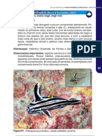 Guia Para Identificacao de Peixes Ornamentais Marinhos Brasileiros IBAMA Volume 2