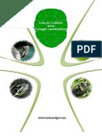 Guia de Cuidados Para Tortugas Semiacuaticas Tortuamigos