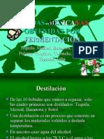 Bebidas Mexicanas Obtenidas Por Fermentacin 1211653052432943 8
