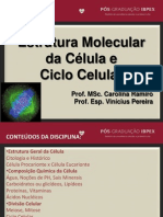 Aula 3 - Estrutura molecular da célula e ciclo celular Profa. Carolina