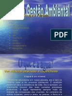 Trabalho Gestão Ambiental (Versão 2.0)